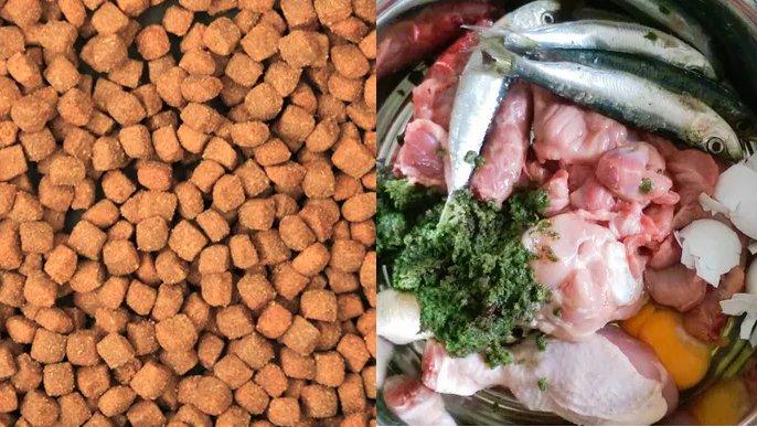 Industrijsko ali doma pripravljena hrana