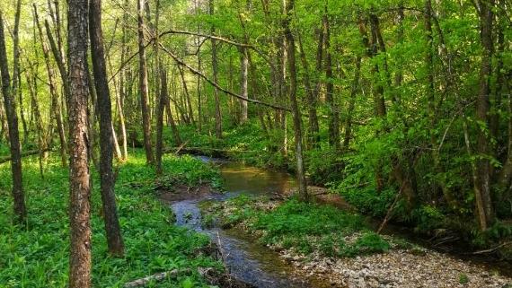 Vodna učna pot Grabnarica